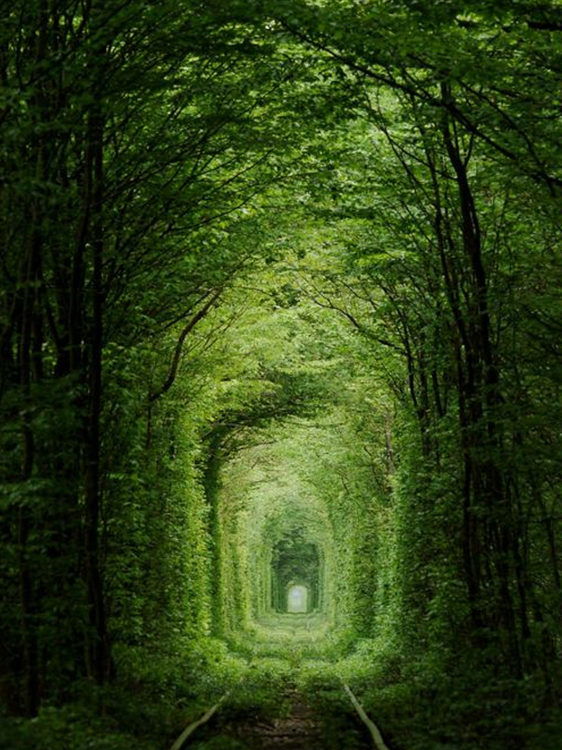 Kleven-Tunnel-Of-Love-3