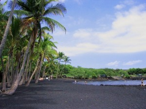 punaluu-black-beach-2