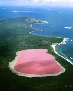 swim-lake-hillier-australia-2