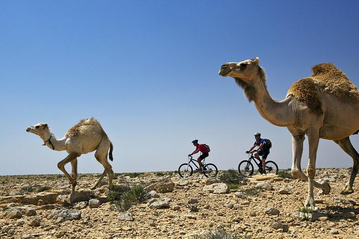 Israel Biking Trip