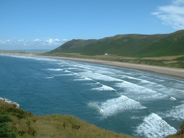 Surfing And Wildlife At Rhossili Beach Wales Uk The