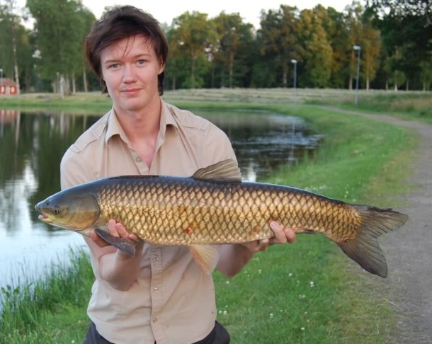 grass-carp