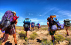 3 Mount Kilimanjaro Routes for Newbie Mountain Trekkers