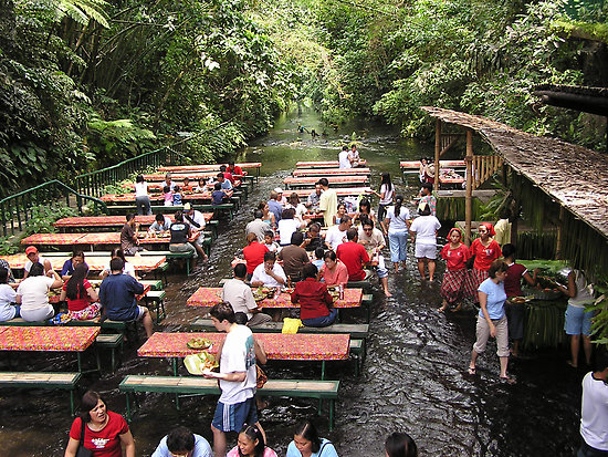 Waterfalls Restaurant Villa Escudero San Pablo City 7
