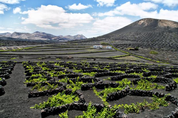 la-geria-vineyards-lanzarote-spain-7