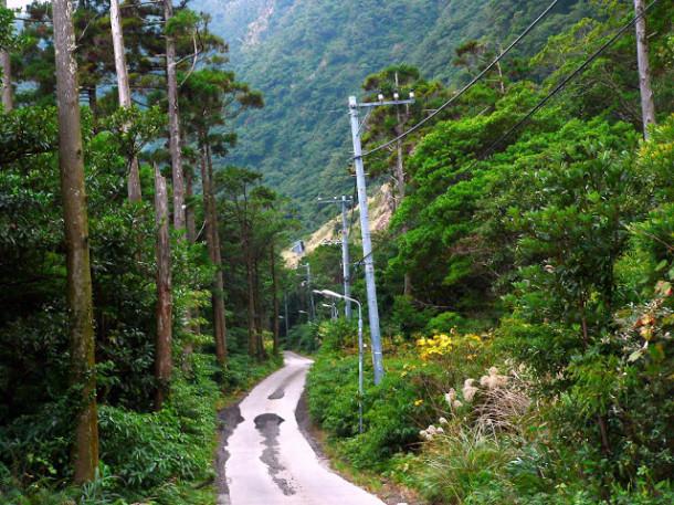 aogashima-trail
