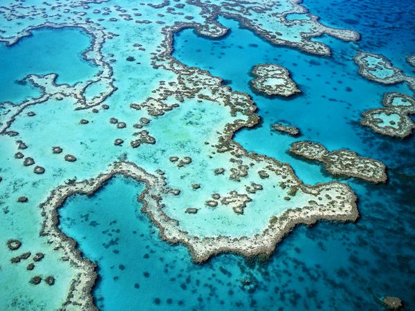 great-barrier-reef-aerial-view_28007_600x450