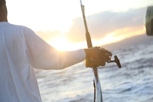 Braid vs Mono Fishing Line - Which To Use & When - The