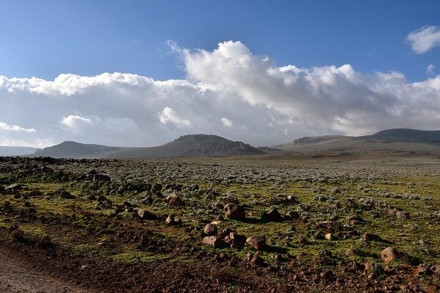 sanetti plateau bale mountains
