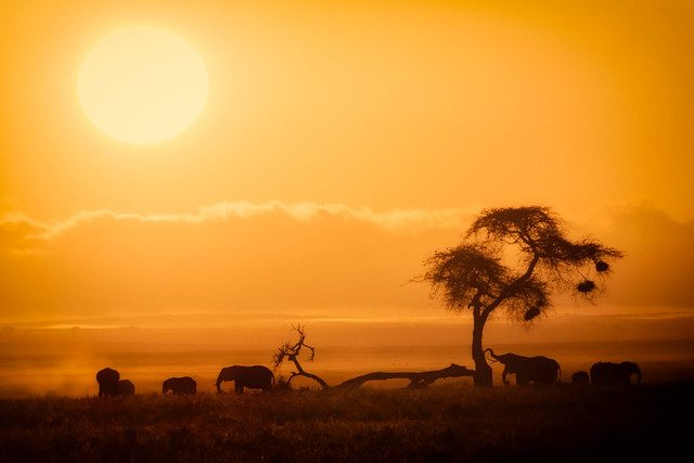 sunset amboseli national park
