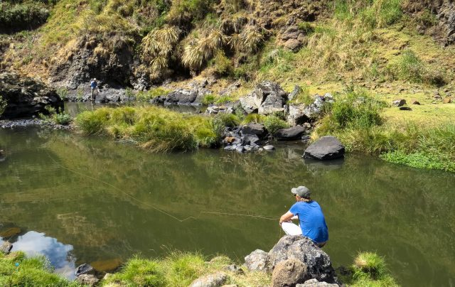fly fishing bale mountains