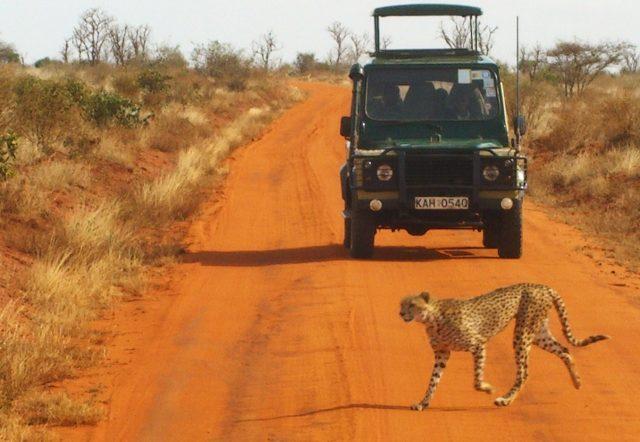 safari car amboseli kenya