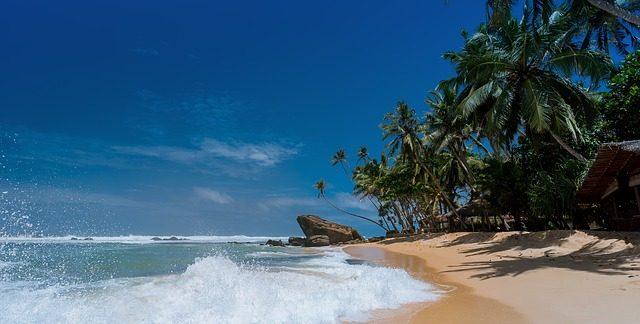 surf dominican republic