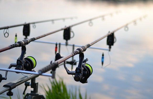lake carp fishing hungary