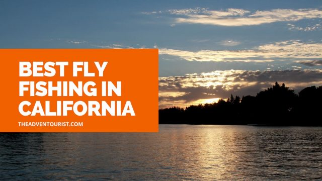 best fly fishing in California
