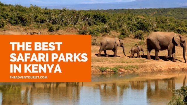 best-safari-parks-in-kenya