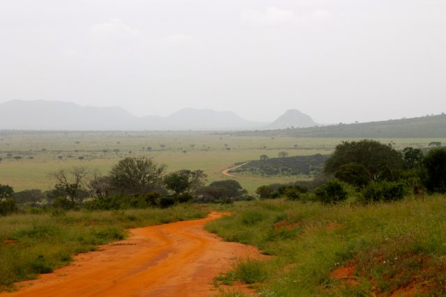 Visiting Tsavo East National Park - views