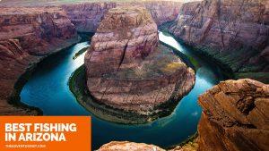 best fishing arizona