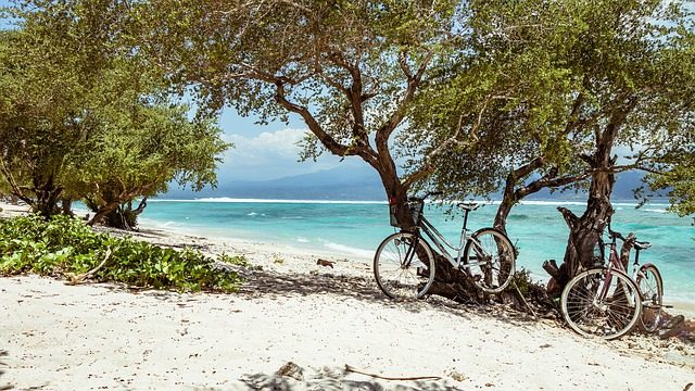 things to do on la digue - cycle
