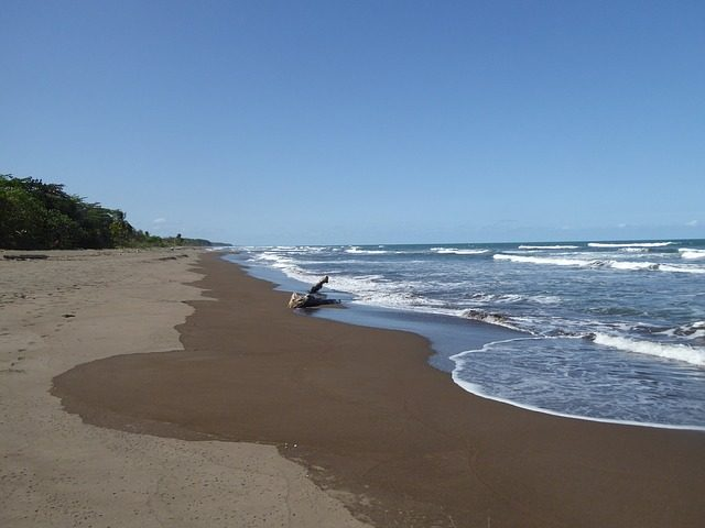 Things To Do In Tortuguero - beach