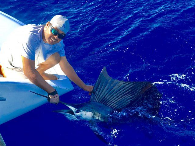 Best Places To Catch Sailfish - Kenya